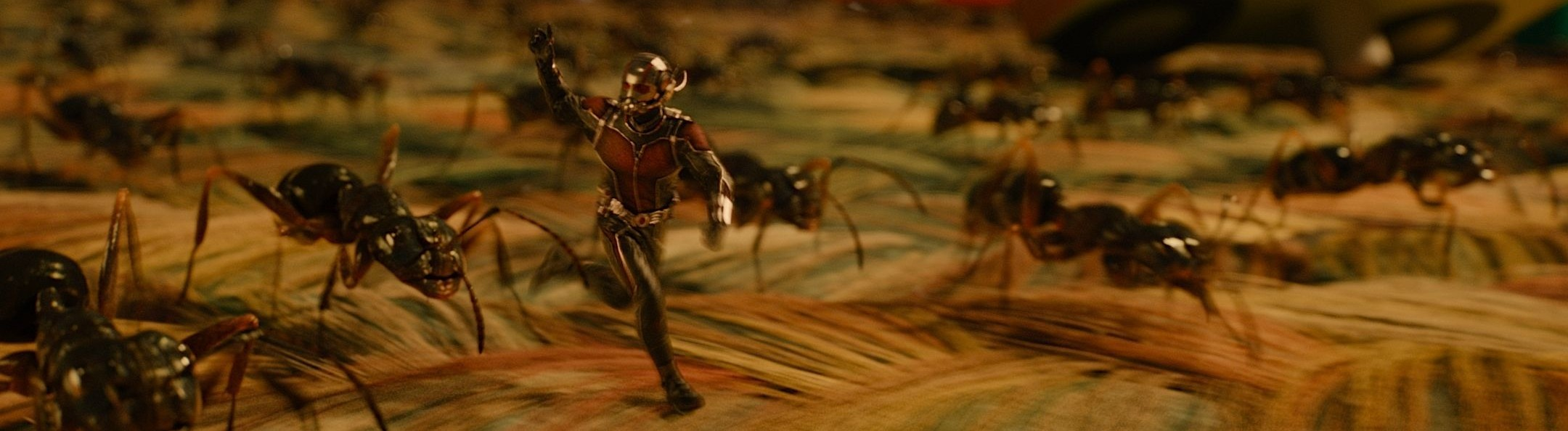 ant-man-microverse-photo-ants-on-carpet[1]
