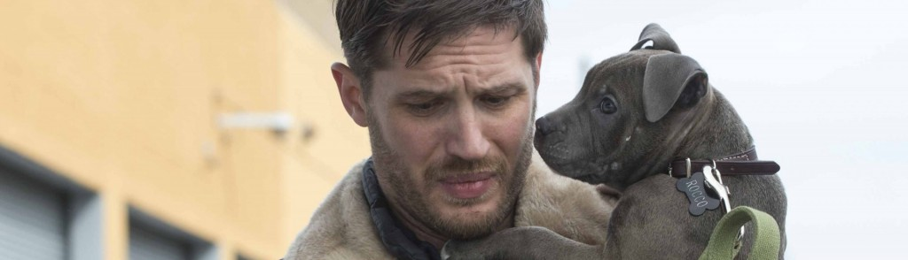 Tom Hardy as ÒBobÓ in THE DROP.  Photo by Barry Wetcher.   Copyright © 2014 Twentieth Century Fox.